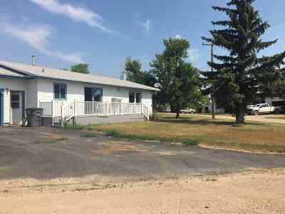 Single Family Home For Sale: 301 2nd Ave