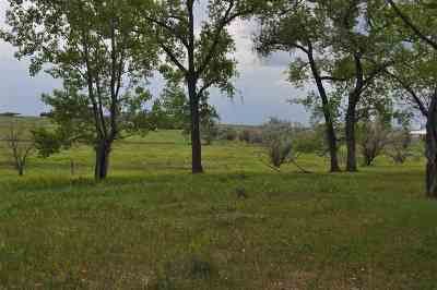 Bottineau County, Burke County, Divide County, McHenry County, McLean County, Mountrail County, Pierce County, Ramsey County, Renville County, Rolette County, Ward County, Wells County, Williams County Single Family Home For Sale: 800 72nd Ave NE