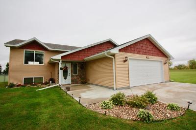 Breckenridge MN Single Family Home For Sale: $199,900