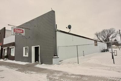 Wyndmere ND Commercial For Sale: $135,000