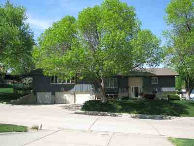 Kearney Single Family Home For Sale: 14 Sioux Lane