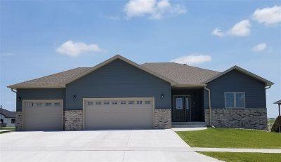 Kearney Single Family Home For Sale: 5107 S Avenue