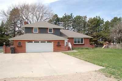 Kearney Single Family Home For Sale: 5530 E Saddlehorse Drive