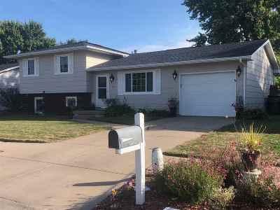 Kearney Single Family Home For Sale: 702 W 10th Street