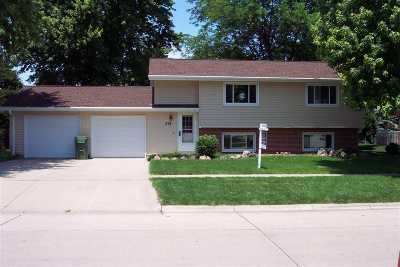 Kearney Single Family Home For Sale: 518 E 48th Street