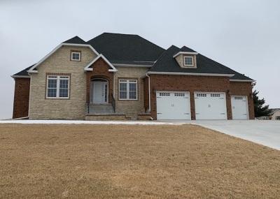 Kearney Single Family Home For Sale: 53 Winnipeg Road