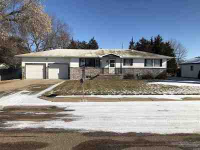 Minden Single Family Home For Sale: 332 S Logan