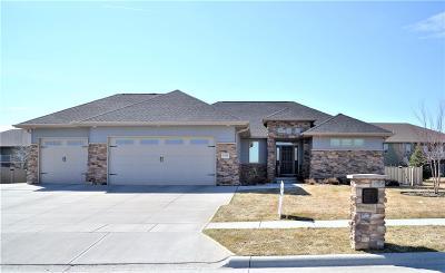 Kearney Single Family Home New Listing: 2504 W 37th Street