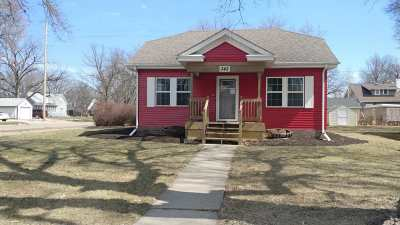 Minden Single Family Home For Sale: 342 N Hubbard