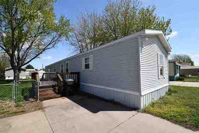 Kearney Single Family Home New Listing: 139 Valley View #2801 Gra