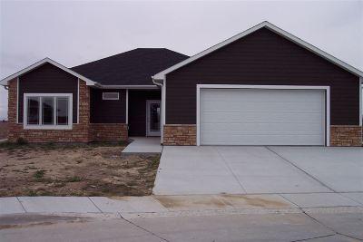 Kearney Single Family Home For Sale: 6909 L Avenue Place