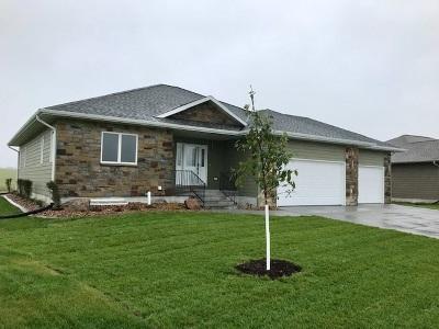 Kearney Single Family Home For Sale: 1204 W 61st Street
