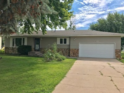 Kearney Single Family Home For Sale: 3911 L Avenue