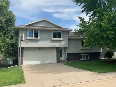 Kearney Single Family Home For Sale: 4115 Palamino Road