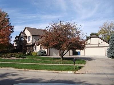 Kearney Single Family Home For Sale: 20 Kings Court