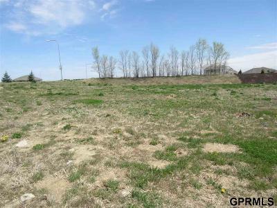 Elkhorn Residential Lots & Land For Sale: 2103 S 214 Street