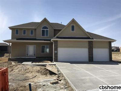 Elkhorn Single Family Home For Sale: 4938 N 204 Avenue