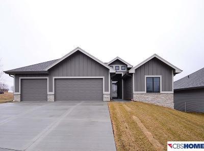 Omaha Single Family Home For Sale: 15448 Norwick Drive