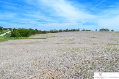 Bellevue Residential Lots & Land For Sale: 15801 S 36 Street