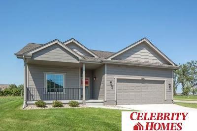 Omaha Single Family Home For Sale: 17618 Fowler Street