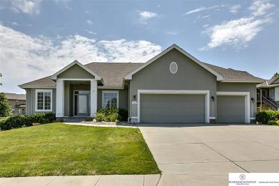 Omaha Single Family Home For Sale: 18121 Van Camp Drive