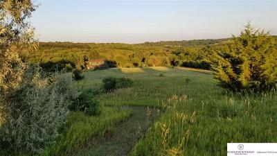 Omaha Residential Lots & Land For Sale: 7007 Rainwood Road