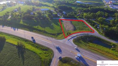 Gretna Residential Lots & Land For Sale: 10816 S 204 Avenue #Rep. 1