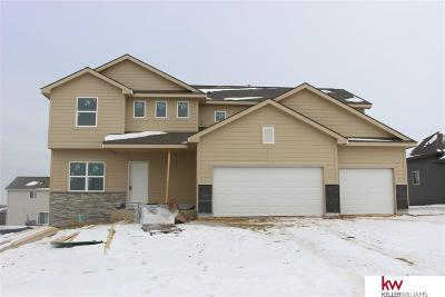 Papillion Single Family Home For Sale: 11613 S 111th Street