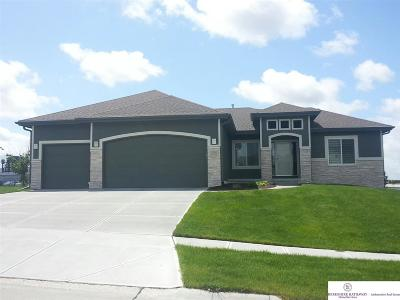 Papillion Single Family Home For Sale: 12101 Pintail Drive