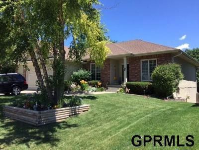 Omaha Single Family Home For Sale: 7001 S 159 Street