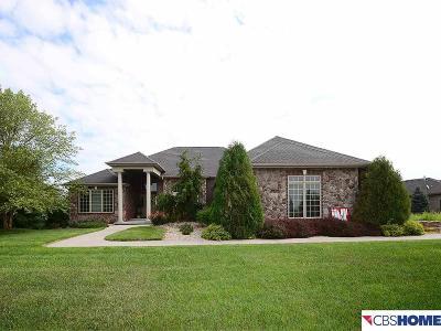 Waterloo Single Family Home For Sale: 24720 Mason Street