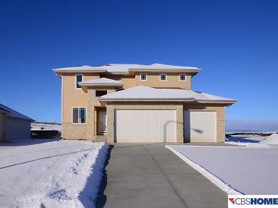 Papillion Single Family Home For Sale: 11732 S 111th Street
