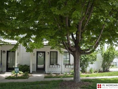 Omaha Rental For Rent: 1111 S 8th Street