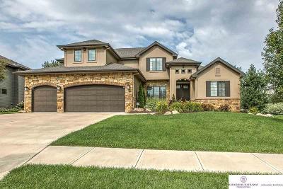 Omaha Single Family Home For Sale: 1414 S 194 Street