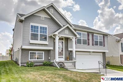 Single Family Home For Sale: 19367 V Street