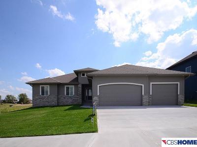 Single Family Home For Sale: 513 Locust Street