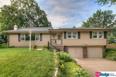 Omaha Single Family Home For Sale: 12507 Crawford Road