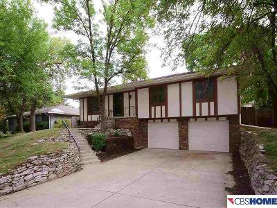 Omaha Single Family Home For Sale: 915 S 153 Street
