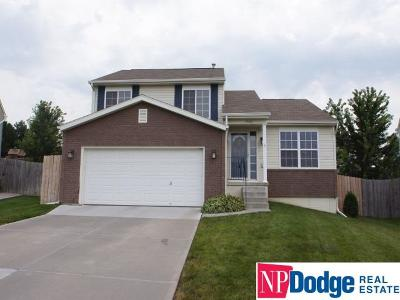 Single Family Home For Sale: 19405 T Street