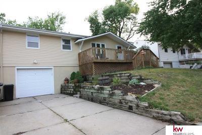Omaha Single Family Home For Sale: 9229 Tomahawk Boulevard