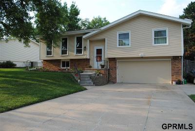 Papillion Single Family Home New: 350 Windsor Drive