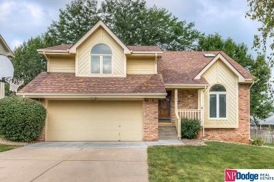 Omaha Single Family Home New: 4360 S 149 Terrace