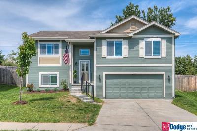Omaha Single Family Home New: 14826 Mary Street