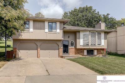 Omaha Single Family Home New: 10932 Curtis Avenue