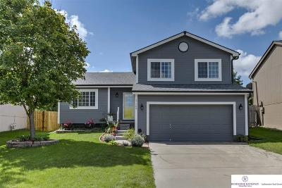 Single Family Home New: 17209 Ruggles Street