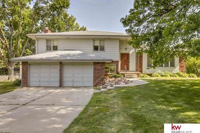 Omaha Single Family Home New: 11689 Capitol Avenue