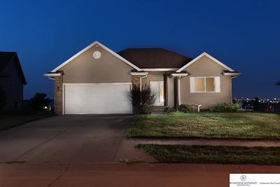 Single Family Home New: 11203 S 170 Street