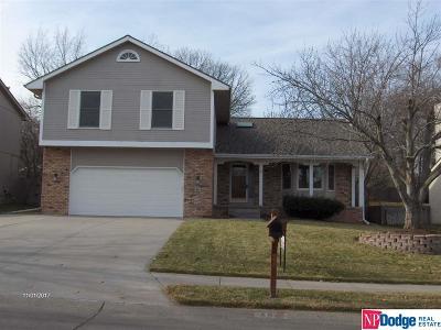 Omaha Single Family Home New: 806 S Fillmore Street