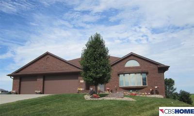 Sarpy County Single Family Home New: 802 Fall Creek Road