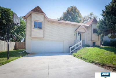Omaha Single Family Home New: 15109 Irene Street